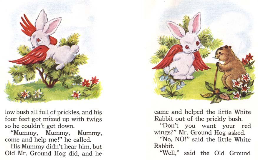 red rabbit online books